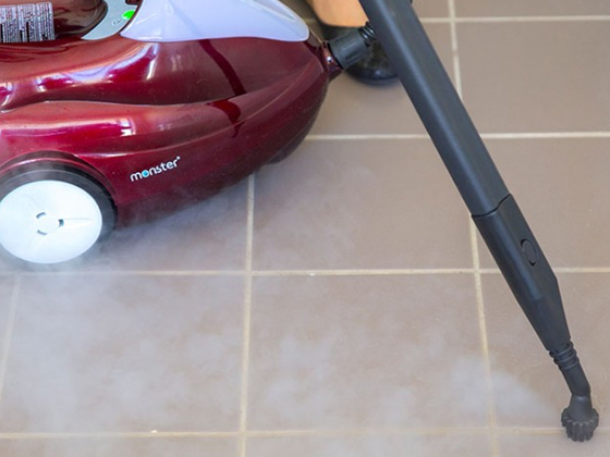 Monster Steam Cleaners Sensitive Choice